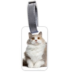 Cutefat Cat  Luggage Tags (two Sides)