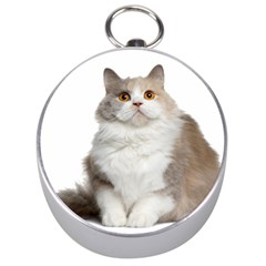 Cutefat Cat  Silver Compasses