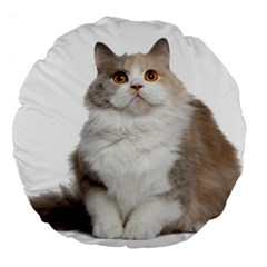 Cutefat Cat  Large 18  Premium Flano Round Cushions
