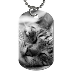 Adorable Animal Baby Cat Dog Tag (one Side)