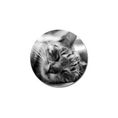 Adorable Animal Baby Cat Golf Ball Marker (4 Pack)