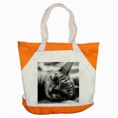 Adorable Animal Baby Cat Accent Tote Bag