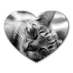 Adorable Animal Baby Cat Heart Mousepads