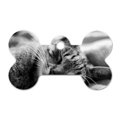 Adorable Animal Baby Cat Dog Tag Bone (two Sides)