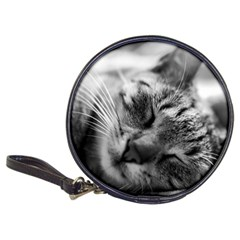 Adorable Animal Baby Cat Classic 20 Cd Wallets