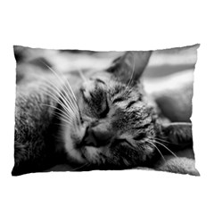 Adorable Animal Baby Cat Pillow Case (two Sides)