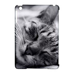 Adorable Animal Baby Cat Apple Ipad Mini Hardshell Case (compatible With Smart Cover)
