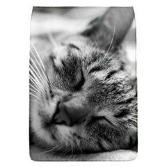 Adorable Animal Baby Cat Flap Covers (s)