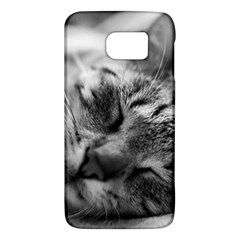 Adorable Animal Baby Cat Galaxy S6