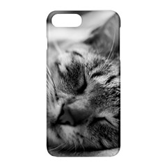 Adorable Animal Baby Cat Apple Iphone 8 Plus Hardshell Case