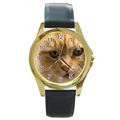 Animal Pet Cute Close Up View Round Gold Metal Watch