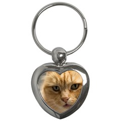 Animal Pet Cute Close Up View Key Chains (heart)