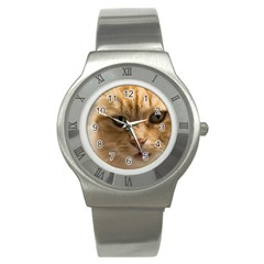 Animal Pet Cute Close Up View Stainless Steel Watch