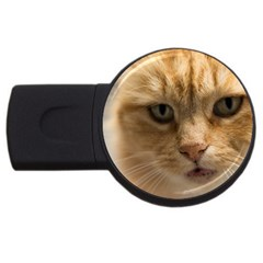 Animal Pet Cute Close Up View Usb Flash Drive Round (4 Gb)