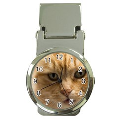 Animal Pet Cute Close Up View Money Clip Watches