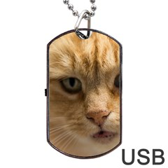 Animal Pet Cute Close Up View Dog Tag Usb Flash (two Sides)