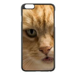 Animal Pet Cute Close Up View Apple Iphone 6 Plus/6s Plus Black Enamel Case