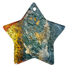 Colorful Abstract Texture  Ornament (star)
