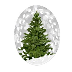 Christmas Xmas Tree Bokeh Oval Filigree Ornament (two Sides)