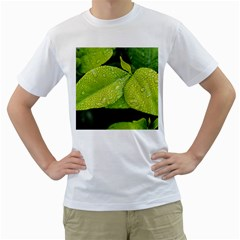Leaf Green Foliage Green Leaves Men s T Shirt (white) (two Sided)