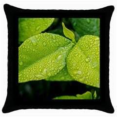 Leaf Green Foliage Green Leaves Throw Pillow Case (black) by Simbadda