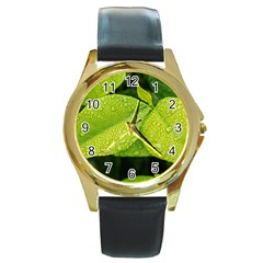 Leaf Green Foliage Green Leaves Round Gold Metal Watch