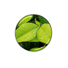 Leaf Green Foliage Green Leaves Hat Clip Ball Marker by Simbadda
