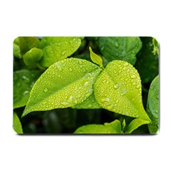Leaf Green Foliage Green Leaves Small Doormat