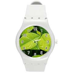 Leaf Green Foliage Green Leaves Round Plastic Sport Watch (m) by Simbadda