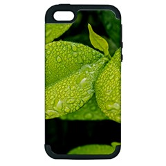 Leaf Green Foliage Green Leaves Apple Iphone 5 Hardshell Case (pc+silicone) by Simbadda