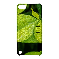 Leaf Green Foliage Green Leaves Apple Ipod Touch 5 Hardshell Case With Stand by Simbadda
