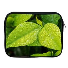 Leaf Green Foliage Green Leaves Apple Ipad 2/3/4 Zipper Cases by Simbadda