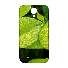 Leaf Green Foliage Green Leaves Samsung Galaxy S4 I9500/i9505  Hardshell Back Case