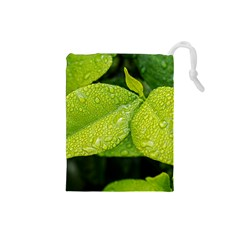 Leaf Green Foliage Green Leaves Drawstring Pouches (small)
