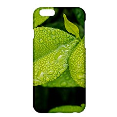 Leaf Green Foliage Green Leaves Apple Iphone 6 Plus/6s Plus Hardshell Case by Simbadda
