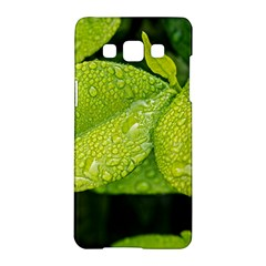 Leaf Green Foliage Green Leaves Samsung Galaxy A5 Hardshell Case  by Simbadda