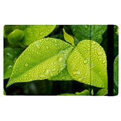 Leaf Green Foliage Green Leaves Apple Ipad Pro 9 7   Flip Case by Simbadda