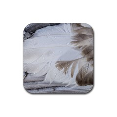 Feather Brown Gray White Natural Photography Elegant Rubber Coaster (square)