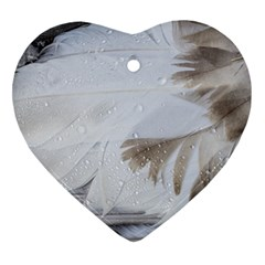 Feather Brown Gray White Natural Photography Elegant Heart Ornament (two Sides)