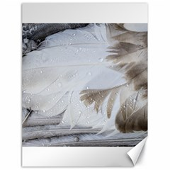 Feather Brown Gray White Natural Photography Elegant Canvas 18  X 24