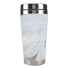 Feather Brown Gray White Natural Photography Elegant Stainless Steel Travel Tumblers