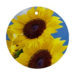 Sunflower Floral Yellow Blue Sky Flowers Photography Ornament (round)