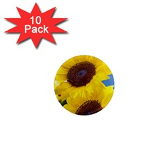 Sunflower Floral Yellow Blue Sky Flowers Photography 1  Mini Magnet (10 Pack)