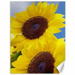 Sunflower Floral Yellow Blue Sky Flowers Photography Canvas 36  X 48
