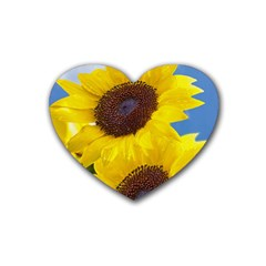 Sunflower Floral Yellow Blue Sky Flowers Photography Heart Coaster (4 Pack)
