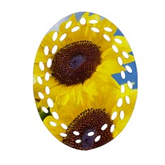 Sunflower Floral Yellow Blue Sky Flowers Photography Ornament (oval Filigree)