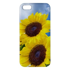Sunflower Floral Yellow Blue Sky Flowers Photography Apple Iphone 5 Premium Hardshell Case