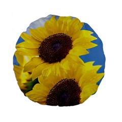 Sunflower Floral Yellow Blue Sky Flowers Photography Standard 15  Premium Flano Round Cushions by yoursparklingshop