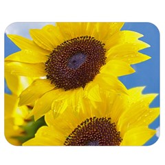 Sunflower Floral Yellow Blue Sky Flowers Photography Double Sided Flano Blanket (medium)