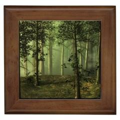 Forest Tree Landscape Framed Tiles